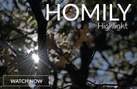 Homily Highlight